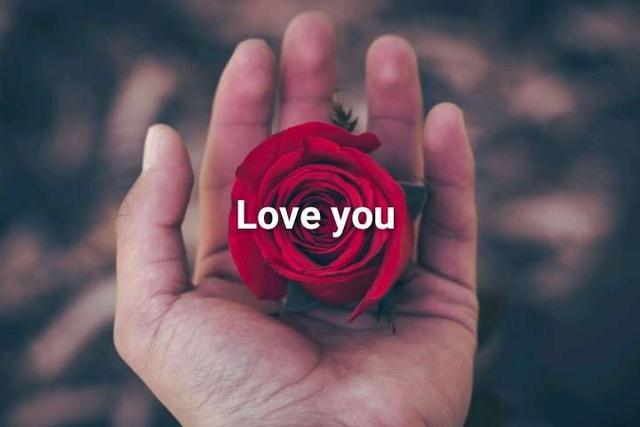லவ் சாங்ஸ்💕💕💕   Poove poochudava Tamil love song