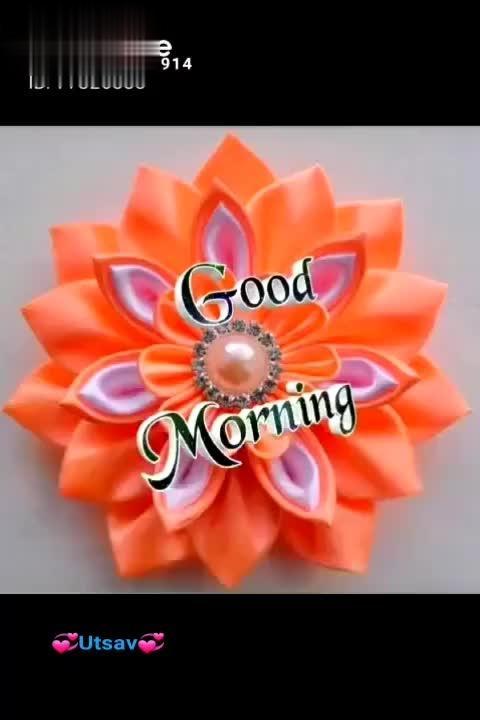 Good🌷Morning🌹🌹 | #Good🌷Morning🌹🌹 #good morning sweet