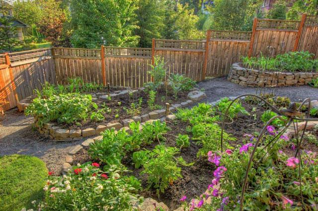 8 Desain Kebun Sayur Di Pekarangan Rumah Tercantik Yang Mudah Ditiru